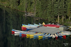 canoe, canoes, lake, reflection, paddling, kayak, dock, cottage life