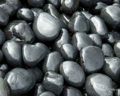 cobbles, cobblestones, black round stones, gun metal stones, gun metal rocks, oregon coast, newport, yaquina head lighthouse, cobble beach, Cobbles, round polished rocks, polished basalt