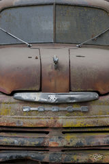 old truck, truck, pickup, rust, paint, dodge, ford, Dodge Patina, flaking paint, worn, worn paint, faded, patina, rust bucket, aged, work truck, red, green, peeling paint