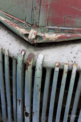 old truck, ford, truck, pickup, rust, paint, flaking paint, worn, worn paint, faded, patina, rust bucket, aged, work truck, red, green, peeling paint