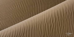 gobi desert, china, abstract, patterns, sand dune, sand, dune, desert, furrowed, wrinkles, wrinkled, gobi, panorama
