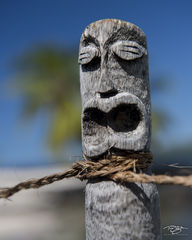 hawaii, big island, tiki, statue, god, hawaiian, throttled, choked, gak, polynesia, carving, sculpture
