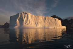 ice, iceberg, sunrise, golden hour, golden light, warmth, climate change, global warming, melt, deliquesce, golden, reflection, bear islands