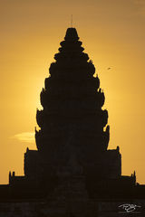 angkor wat, cambodia, temple, angkor wat, lotus, roof, towers, lotus bud, silhouette, golden hour, morning, backlit, cambodia, monastery