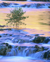 Arizona, Grand Canyon, Havasu Creek, Morning Glow, canyon, northern arizona, waterfalls, havasupai, supai, people of the blue green water, sapling, travertine falls, waterfall, hualapai hilltop