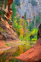 Arizona, Sedona, red rocks, oak creek, canyon, northern arizona, oak creek canyon, autumn color, autumn colour, fall colour, fall colours, reflection, vortex, tranquil landscapes, spectacular color