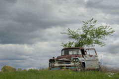 abandoned, truck, pickup, reclamation, storm clouds, cloudy, rusty, rust, rust bucket, chevrolet, viking