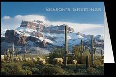 Season's Greeting Cards - Sonoran Winter - Pack of 10