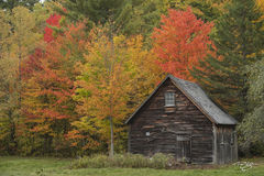 autumn, fall, colour, colours, color, colors, leaves, new england, vermont, new hampshire, new york, maine, cabin, old cabin, wood, rustic cabin