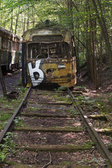 abandoned, trolley car, steetcar, boston green line, Massachusetts Bay Transportation Authority, mbta, overgrown, in the woods, trains, train cars, forest, rotted, rusting, train