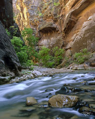 zion national park, zion, narrows, virgin river, flowing water, golden canyons, golden, light, canyon walls, wet rock, the narrows, utah