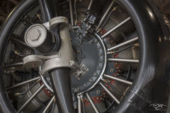 rotary engine, plane, aircraft, airplane, propeller, motor, wwII, flight
