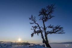 russia, lake baikal, siberia, ice, winter, Pribaikalsky National Park, Прибайкальский национальный парк, Pribaykalski National Park, shamainst, shaman, tree, shaman tree, ribbons, taiga, shamanka, khu