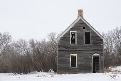 abandoned building, abandoned house, derelict, saskatchewan, snow, winter, owl, window, great horned owl, squatter
