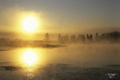 Wyoming, Yellowstone, Yellowstone River, sunrise, yellow, mist, fog, foggy, mist on water, reflection, peace, peaceful, tranquility, solace, solitude, misty, inversion, spring, geothermal