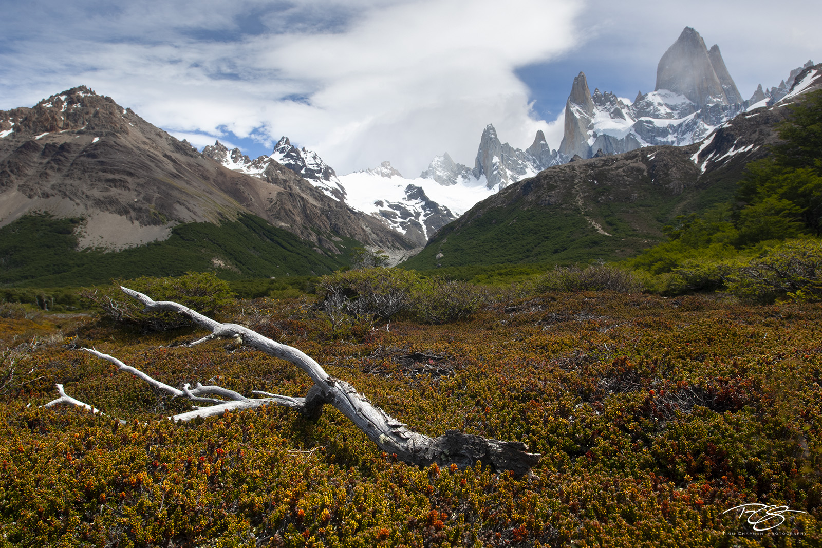 The Towers of Mt Fitzroy rise above the lush alpine valley in Argentina's Patagonia