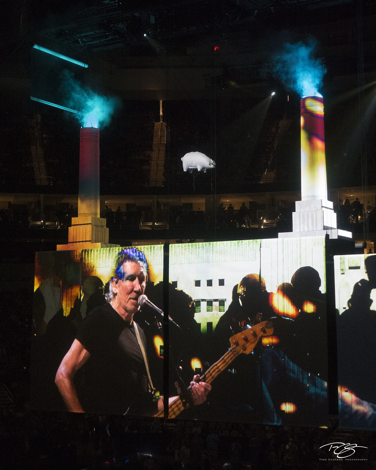 roger waters, pink floyd, in concert, performing, us + them, us and them, animals, battersea power station, pigs, pig, photo