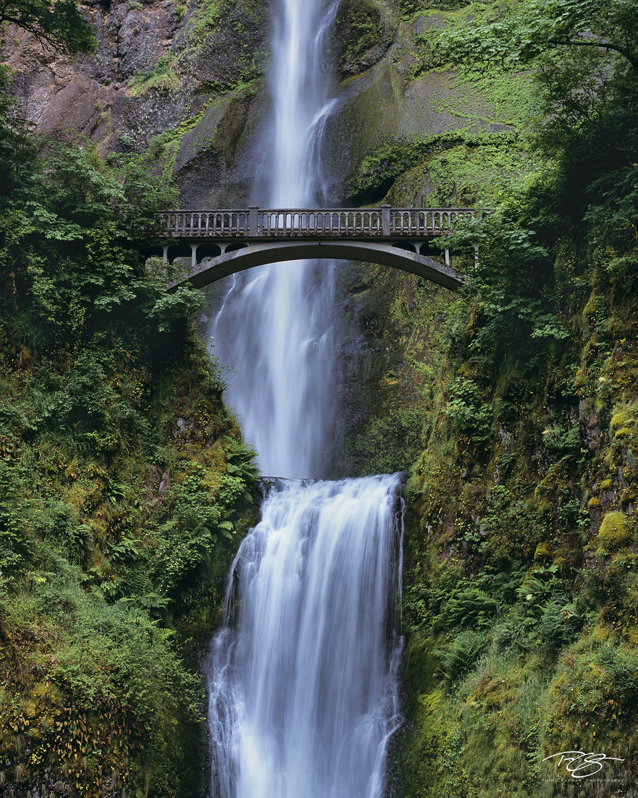 The spectacular Multnomah Falls plunges a total of 620 feet over two cascades passing the moss laden walls of the Columbia River...