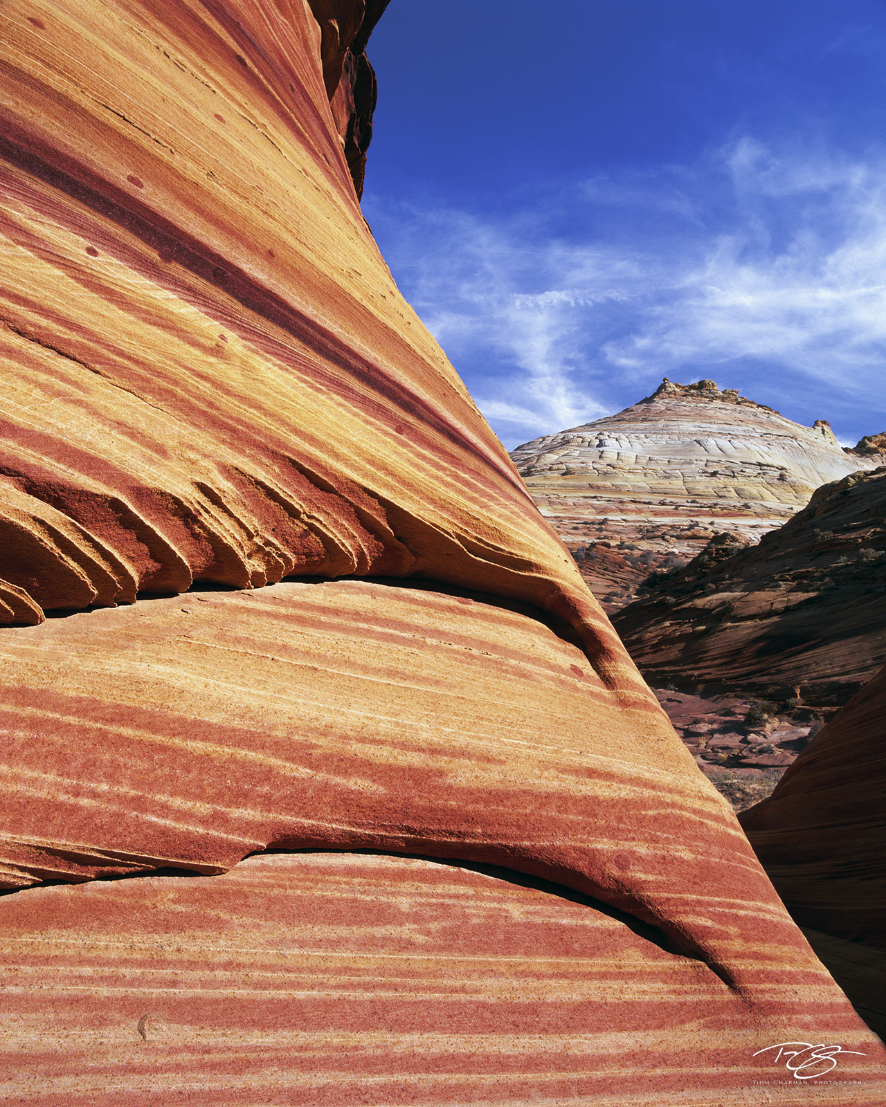 Colourful columns of striated sandstone of Coyote Butte and Top Rockcompete for attention