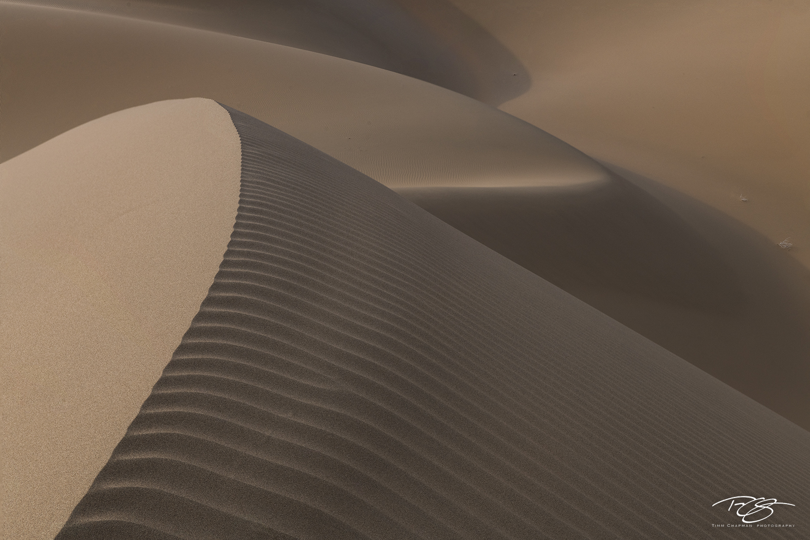 gobi desert, china, abstract, patterns, sand dune, sand, dune, desert, dynamic, sculpture, gobi
