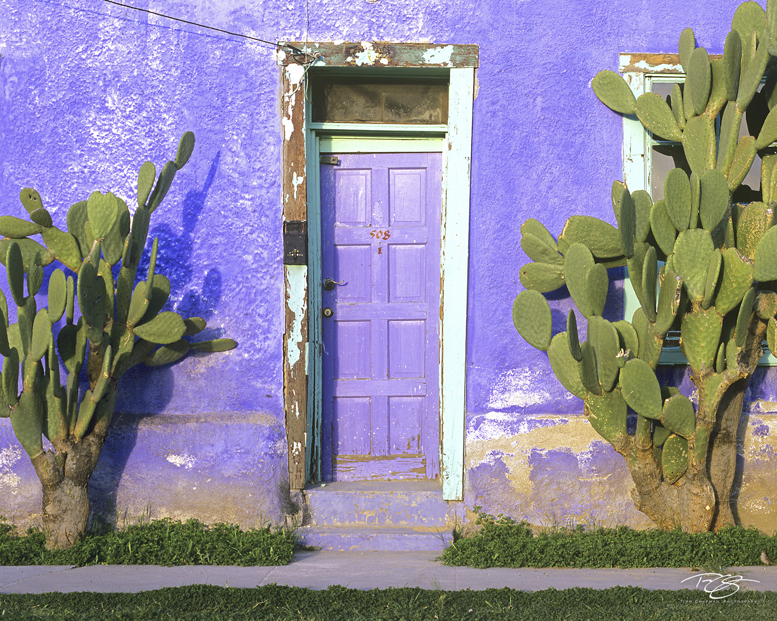 Arizona, Southwest, desert, door, doorways, doors, window, windows, entrances, entranceways, weathered, derelict, cactus, colourful doors, colorful doors, paint chipped, flaking paint, cacti, lavender