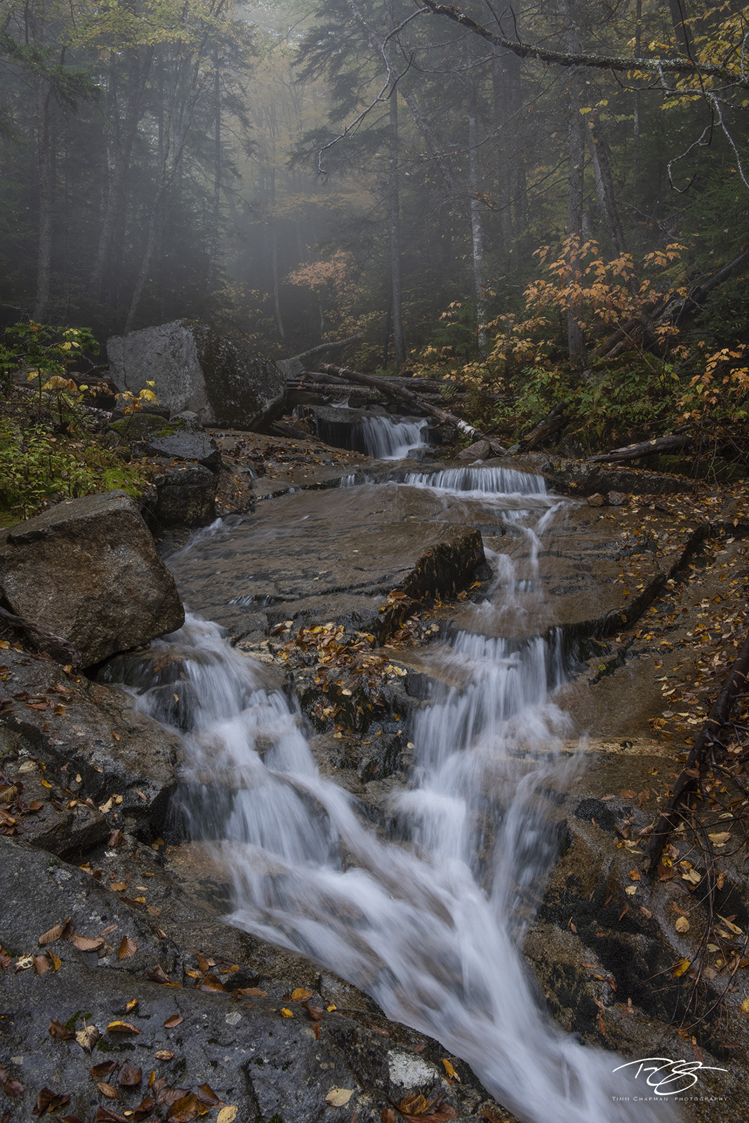 autumn, fall, colour, colours, color, colors, leaves, new england, Falling Waters Trail, Franconia Notch, State Park, New Hampshire, brook, stream, falls, waterfalls, photo