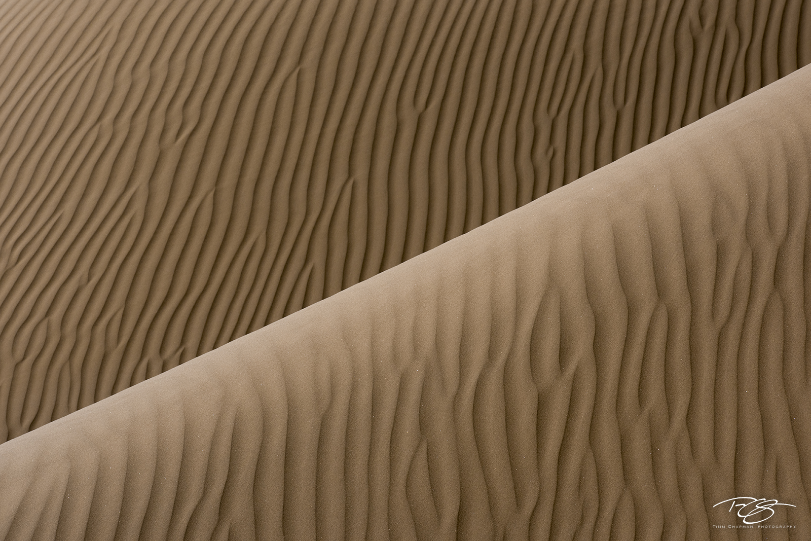 gobi desert, china, abstract, patterns, sand dune, sand, dune, desert, furrowed, wrinkles, wrinkled, gobi, photo