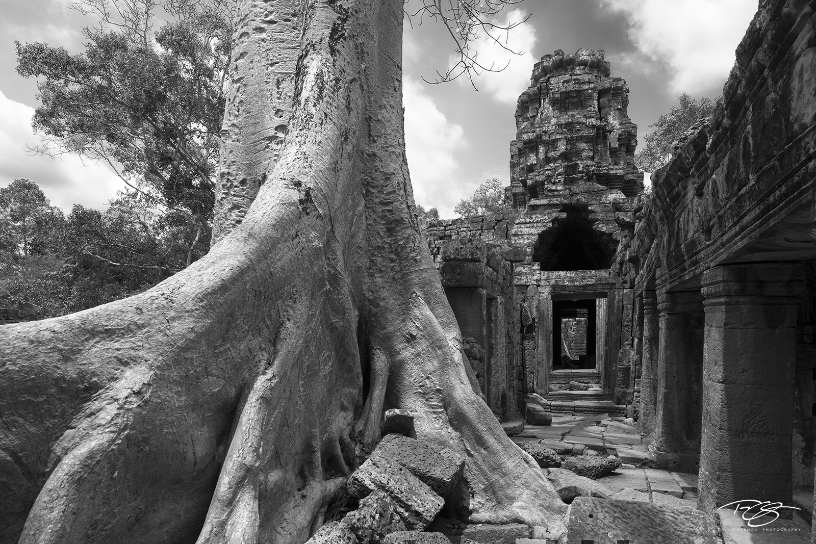 cambodia, temple, guardians, tree roots, roots, tree, spung, strangler, banyan, black and white, b&w, Banteay Kdei, angkor wat, monastery, gallery, chamber, ancient, overgrown, reclamation, nature rec, photo