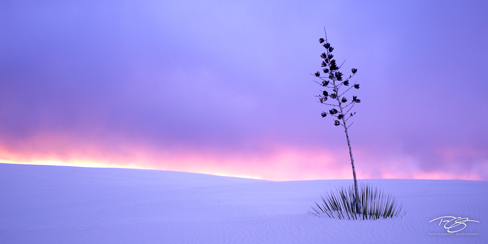 New Mexico, panorama, soaptree yucca, sunset, storm clouds, fiery sunset, pastel, purple, lavender sky, peace, calm, simplicity, white sands, white sands national monument, buried alive, snow, sand, w, photo