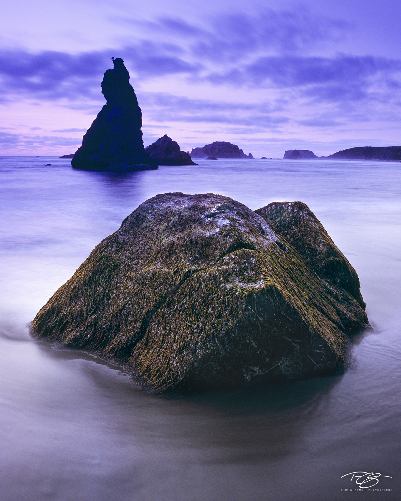 High Tide swirls about a seaweed laden rock beneath lavender skies