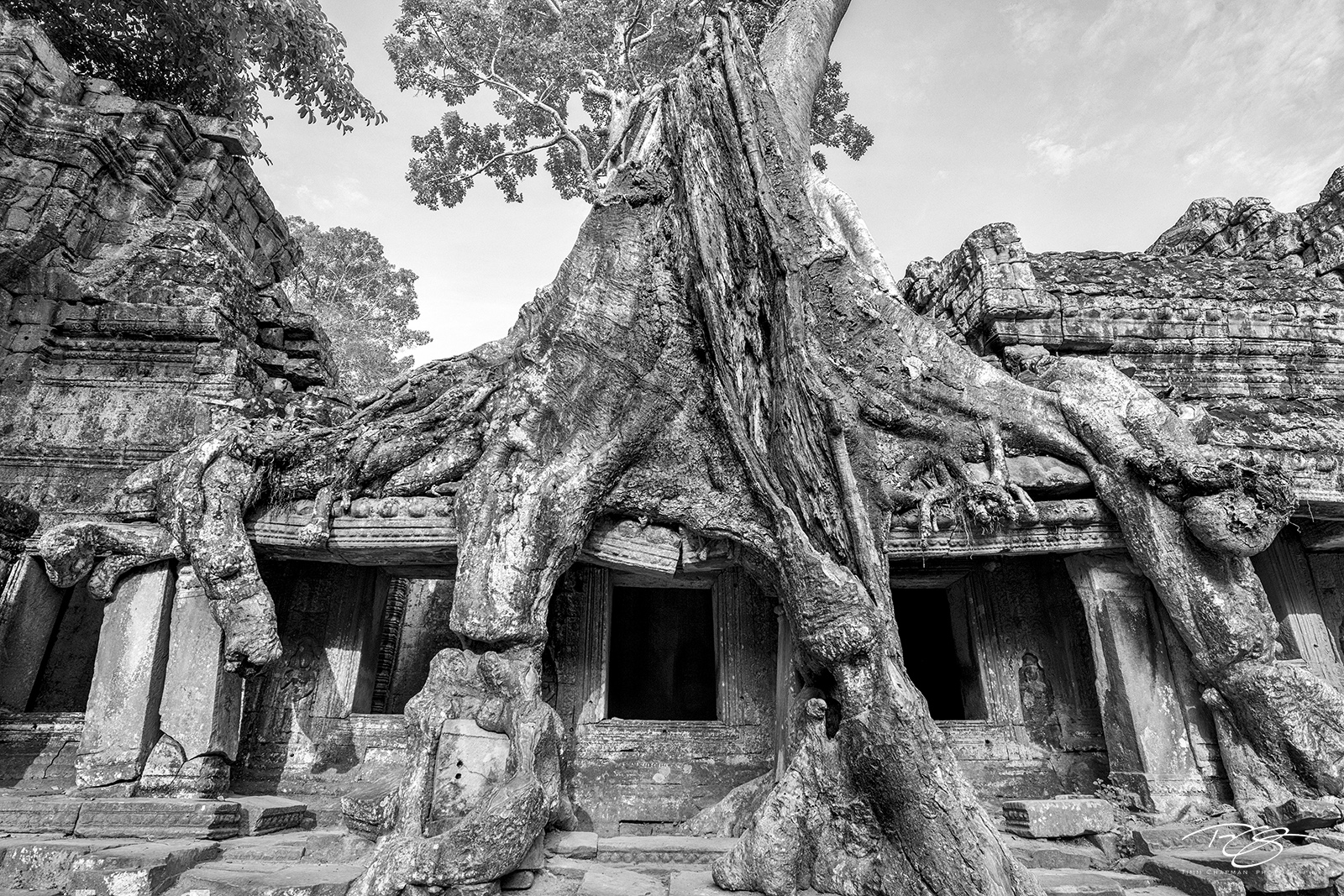 cambodia, temple, guardians, tree roots, roots, tree, spung, strangler, banyan, black and white, b&w, preah khan, angkor wat, monastery, gallery, chamber, ancient, overgrown, reclamation, nature recla, photo