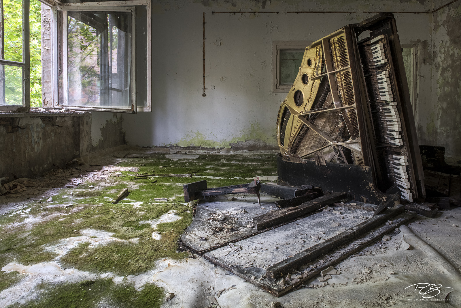 chernobyl, chornobyl, pripyat, exclusion zone, abandoned, forgotten, wasteland, radioactive, decay, peeling paint, moss, reclamation, green, wood, piano, grand piano, tipped over, keys, on edge, mold,, photo