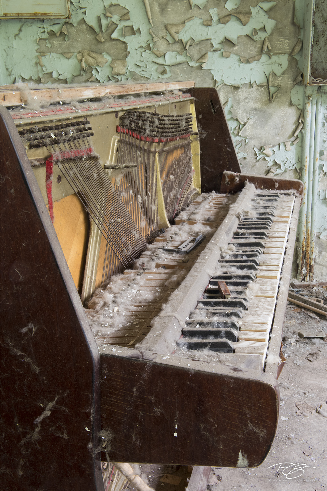 chernobyl, chornobyl, pripyat, exclusion zone, abandoned, forgotten, wasteland, radioactive, decay, peeling paint, reclamation, dusty, wood, piano, green, dust bunny, keys, dust, dirty, weathered, photo