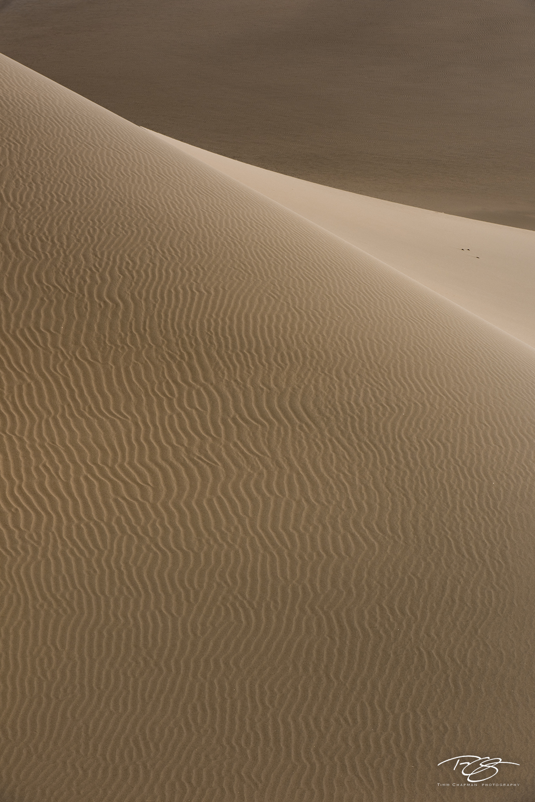 gobi desert, china, abstract, patterns, sand dune, sand, dune, desert, sandscape, photo