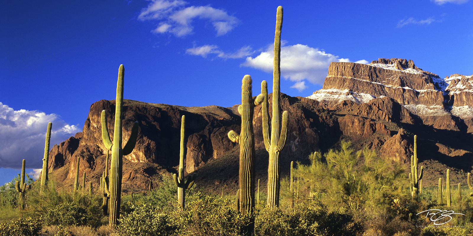 A rare snowfall crowns the Flatiron on the Superstition Mountains