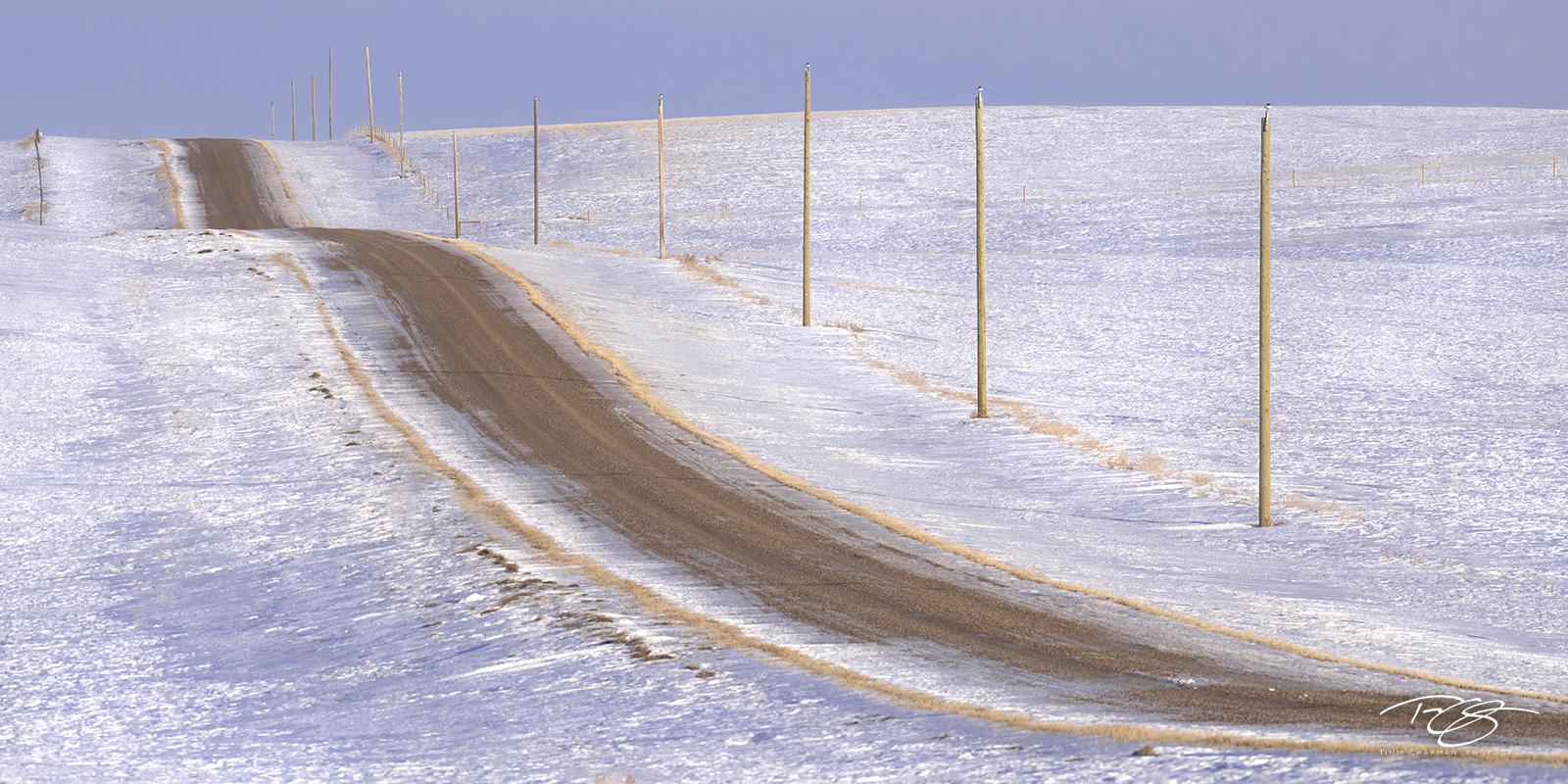 A gravel road undulates across the wintry Saskatchewan prairie