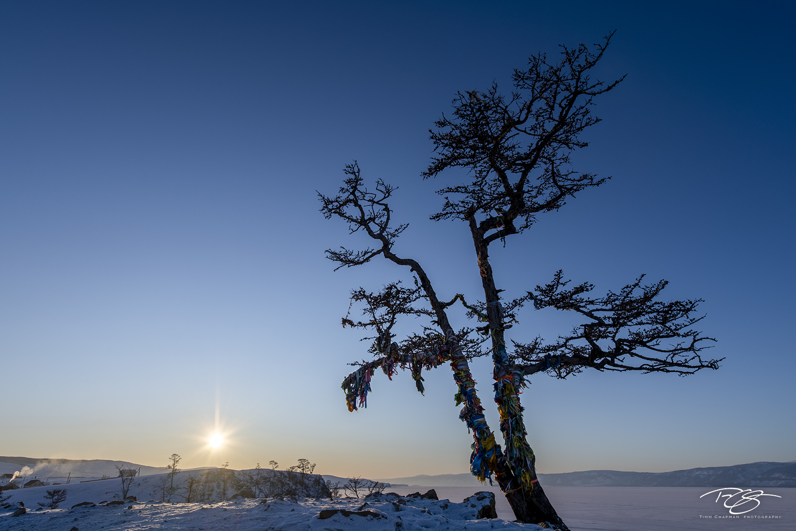 russia, lake baikal, siberia, ice, winter, Pribaikalsky National Park, Прибайкальский национальный парк, Pribaykalski National Park, shamainst, shaman, tree, shaman tree, ribbons, taiga, shamanka, khu, photo